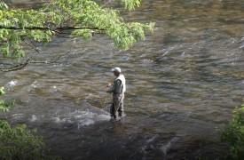 Fly fishing in Toccoa River in Blue Ridge GA