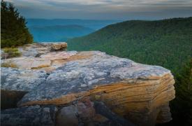 Ancient Mountains | Appalachian Wildlife | Cabin Rentals of Georgia