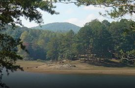 Lake Nottely | Activities in Blue Ridge | Cabin Rentals of Georgia