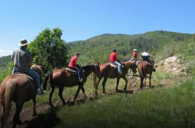 Blanche Manor | Horseback Riding | Activities in Blue Ridge