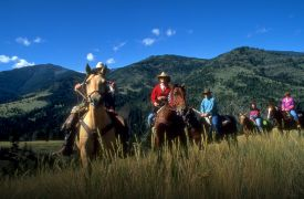 Adventure Trail Rides | Horseback Riding | Blue Ridge Activities