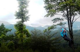 Zip-Lining | Activities in Blue Ridge | Cabin Rentals of Georgia