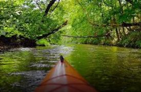 Jon Ron Toccoa River | Activities in Blue Ridge | Cabin Rentals of Georgia