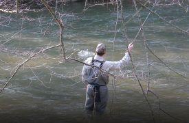 Reel Em In Guide Service | Fishing in North GA | Cabin Rentals of Georgia