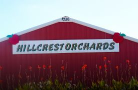 Hillcrest Orchards | Orchards in North GA | Cabin Rentals of Georgia