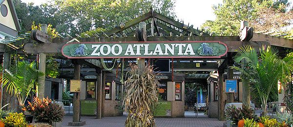 Zoo deals in Atlanta, GA: 50 to 90% off deals in Atlanta. Christmas Light Hayride for Four, Six, or Eight at Pettit Creek Farms (Up to 44% Off). Five Options Available.. Two or Four Admissions with Bags of Feed at Rainforest Adventures (Up to 41% Off). Admission to .