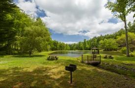 Bella Vista Lodge | Cabin Rentals of Georgia | Enjoy A Picnic