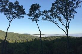 Arcadia | Cabin Rentals of Georgia | Gorgeous Long-Range Views