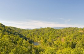 Riverview Lodge | Cabin Rentals of Georgia | Panoramic View