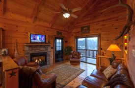 Hiwassee River Run | Cabin Rentals of Georgia | Living Area