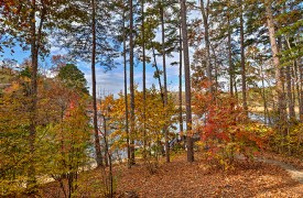 Blue Ridge Lake Cottage | Cabin Rentals of Georgia | Autumn Views of Lake Blue Ridge