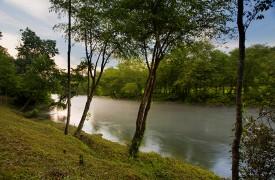 A Rivers Bend | Cabin Rentals of Georgia | Peaceful Toccoa River