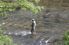 The River's Edge | Cabin Rentals of Georgia | Fly Fishing from the Cabin Rental