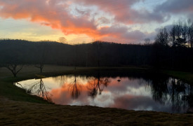 Cherokee Sunrise on Noontootla Creek | Cabin Rentals of Georgia | Sunrise Over the Pond