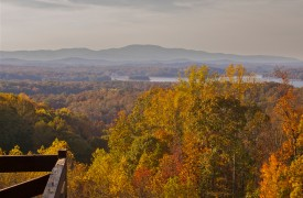 Royal Mountain Lodge | Fall Foliage | Cabin Rentals of Georgia