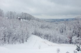 Royal Mountain Lodge | Winter Views | Cabin Rentals of Georgia