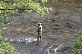 Skydance | Cabin Rentals of Georgia | Fish with Toccoa River Outfitters