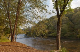 Time Flies | Cabin Rentals of Georgia | Beautiful Toccoa River