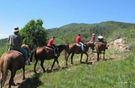 Time Flies | Cabin Rentals of Georgia | Enjoy Horseback Riding