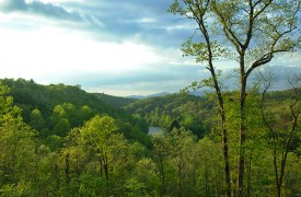 Riverview Lodge | Cabin Rentals of Georgia | Gorgeous View of River