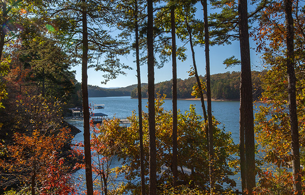 Blue Ridge Lake View Cabins | Cabin Rentals of Georgia